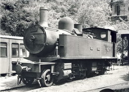 CFD Lozère Locomotive 120 N°325 à Florac En 1953 661.8 - Ed BVA - France