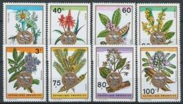 Rwanda, 1969 African Medicinal Herbs And Medicinal Plants - Mint - Y-34 - Rwanda