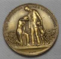 Des Deutschen Volkes Leidensweg - Infla-Medaille 1923 - [ 3] 1918-1933 : Weimar Republic