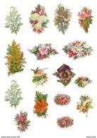 LOT DE 16 CHROMOS DÉCOUPIS FLEUR -  FLOWER - FLOR - FIORE - Fleurs
