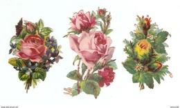 LOT DE 3 CHROMOS DÉCOUPIS ROSE ROSES FLEUR FLEURS - PINK FLOWERS FLOWERS - FLORES - FIORI ROSA - Fleurs
