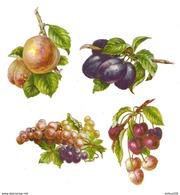 LOT DE 4 CHROMOS DÉCOUPIS FRUIT CERISE PRUNE RAISIN - FRUIT CHERRY PRUNE RAISIN - Fleurs