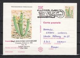 Rumänien 1997,  1 Ganzsache, Kaktus + SStpl. Kaktus, Gel./Romania 1997, 1 Stationary Cactus + Spec. Postmark Cacti, Used - Sukkulenten