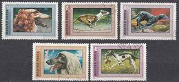 UNGHERIA - 1972 - Lotto Di Cinque Valori Usati: Yvert 2221/2225; Cani Levrieri. - Hungary