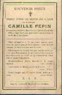 Souvenir Mortuaire PEPIN Camille (1883-1908) Mort à MOUSTIER-SUR-SAMBRE - Images Religieuses