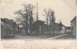 Westerlo - Westerloo - 1904 - Uitg. F. De Coster 4632 - Westerlo