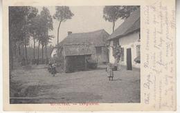 Westerlo - Westerloo - Berghoem - Geanimeerd - 1904 - Westerlo