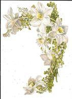 Grand DECOUPI : Branche De Fleurs De Lys - Fleurs