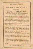 Souvenir Mortuaire TREFOIS Zoé (1888-1908) Morte à MOUSTIER-SUR-SAMBRE - Images Religieuses