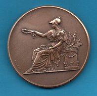 Médaille En Bronze  - 1910-1911 - Association Polytechnique - Cours Gratuits - Mlle DULIEU Adèle - France