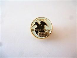 PINS VILLE AVENIR  BLANQUEFORT 33  GIRONDE / 33NAT - Cities