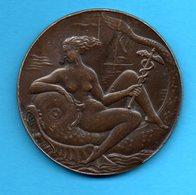 Médaille En Bronze  - Ville Du HAVRE  Par PM POISSON -  Femme - Caducet - Poisson - France