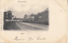 Westerlo - Westerloo - Bist - 1901 - Uitg. D. Hendrix, Antwerpen - Westerlo