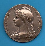 Médaille En Bronze - 1909 - Société Amicale Des Anciens élèves De L'Association Polytechnique - France