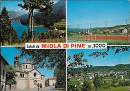 SALUTI DA MIOLA DI PINE' (TN) - VIAGGIATA DA BASELICA DI PINE' 1978 - Saluti Da.../ Gruss Aus...