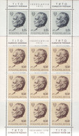 TITO , MICHEL 1466 , MNH - Blocks & Sheetlets