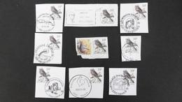 10F Pinson 2351 Chevetogne Han-s-Lesse Namur (x3) Philipville Yvoir - 1985-.. Oiseaux (Buzin)