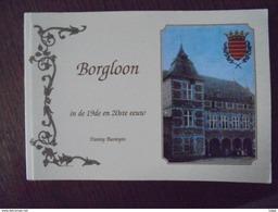 Boek Borgloon In De 19de En 20ste Eeuw - Borgloon