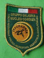 SCUDETTO DA BARACCIO Corpo Nazionale Polizia Faunisticagruppo Calabria Nucleo Cosenza - Italy