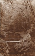 AM24 In Lydford Gorge - Judges Postcard - Other