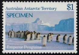 ~~~  Australia Antarctic Territory 1984 - Fauna Penguins Specimen - Mi. 72 ** MNH ~~~ - Australian Antarctic Territory (AAT)