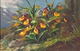 CPA Suisse  * Peinture Fleurs * - Fleurs
