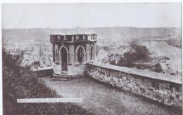 Namen - Namur - Vue Sur La Meuse Prise Du Donjon - Namur