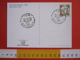 A.03 ITALIA ANNULLO - 1996 UDINE TERREMOTO FRIULI 1976 69^ ADUNATA NAZIONALE ALPINI ANA ALPINO CARD BRIGATA ALPINA JULIA - Geologia