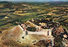 VILLENEUVE LES AVIGNON - Le Fort Saint André élevé Sur Le Mont Andaon - Villeneuve-lès-Avignon