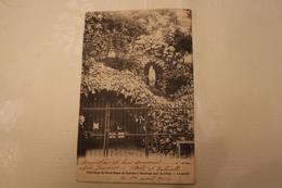 H-207 / Liège - Bassenge, Grotte N.-D. De Lourdes /  Circulé  1904 .- - Bassenge