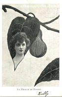 Illustrateur :  BELBY LA FEUILLE DU POIRIER - Ilustradores & Fotógrafos