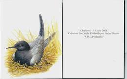 Carte Blanco Avec Au Verso Création  Cercle Phila André Buzin - 1985-.. Oiseaux (Buzin)