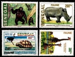 (100) Senegal  2002 / Fauna / Animals / Animaux / Dieren / Tiere / Scarce / Rare    ** / Mnh  Michel 2006-09 - Sénégal (1960-...)