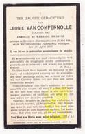 DP Leonie Van Compernolle / DeGryse ° Beveren Roeselare 1864 † Westrozebeke Staden 1933 - Images Religieuses