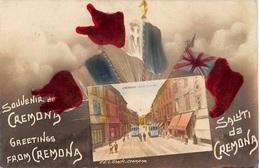 Italia  -   Saluti Da CREMONA -  Foto Cartolina. - Cremona
