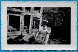 PHOTO Photographie Amateur - BEBE Dans Sa Poussette Près Des Cages à Lapins - Photographs