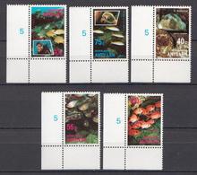 Netherlands Antilles MNH Set - Fishes