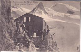CPA - Ascension Du MONT BLANC Les Grands Mulets - Chamonix-Mont-Blanc