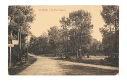 La Baule - Le Bois D'amour - 421 - La Baule-Escoublac