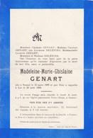 NAMUR Madeleine GENART 1909-1909 Famille DELEPINE - Décès