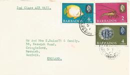Barbados 1966 Bridgetown Butterfly Fish Spiny Lobster Sea Urchin Cover - Barbados (1966-...)