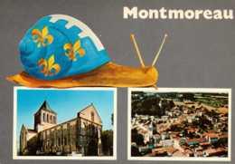 Dep 16 , Cpm MONTMOREAU , Multivues , 26 , L'église , Vue Générale  (D09.747) - Autres Communes