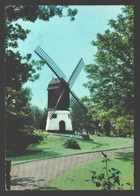 Knokke / Albert Plage - Knokke-Zoute Duinbergen - Oude Molen - Moulin / Mill - Knokke