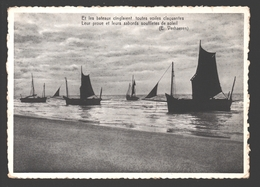 Knokke / Knocke-Zoute - Et Les Bateaux Cinglaient ... - Zeilboot / Voilier - Nels Bromurite - Knokke