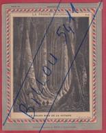 """Protége Cahier Ancien La France Coloniale  """"Grand Bois De La GUYANE - Protège-cahiers"""