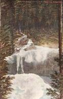 """Canadian Rockies.IlTwin Falls. Yoho Valley"" Tuck Oiette The Canadian Rpckies Ser.PC # 2519 - Tuck, Raphael"