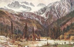"""Canadian Rockies. Hermit Glacier And  Ranve"" Tuck Oiette The Canadian Rpckies Ser.PC # 2519 - Tuck, Raphael"