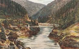"""Canadian Rockies. Cariboo Bridge. Fraser Canyon Tuck Oiette The Canadian Rpckies Ser.PC # 2519 - Tuck, Raphael"