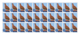 SIERRA LEONE 2018 MNH Red Pigeon 30v - OFFICIAL ISSUE - DH1902 - Sierra Leone (1961-...)