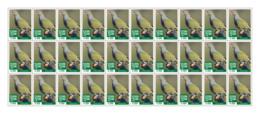 SIERRA LEONE 2018 MNH Green Pigeon 30v - OFFICIAL ISSUE - DH1902 - Sierra Leone (1961-...)